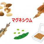 マグネシウムが含まれる食品(ナッツ類、魚、するめ、豆類、納豆)