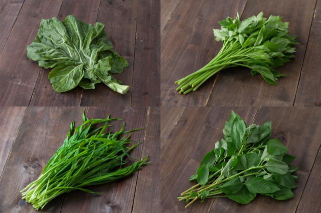 青汁に使われている野菜、大麦若葉、明日葉、ケール、モロヘイヤ